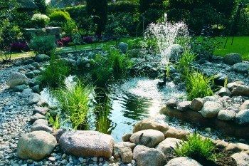 Oase Teichschalen - Teichbecken der fertige Gartenteich