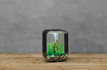 biOrb Aquarieum Life 15 LED schwarz
