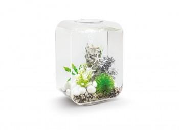 biOrb Aquarieum Life 15 LED transparent