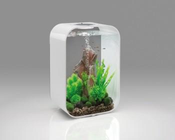 biOrb Aquarieum Life 45 MCR weiß