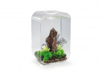 biOrb Aquarieum Life 60 MCR transparent