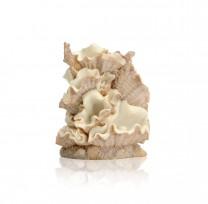 biOrb Muschel Ornament klein