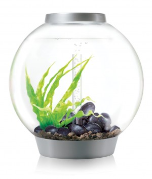 biOrb Aquarieum Classic 60 LED silber