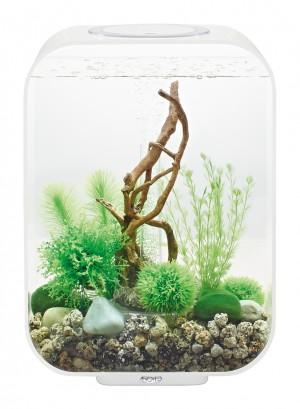 biOrb Aquarieum Life 15 LED weiß