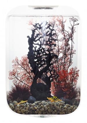 biOrb Aquarieum Life 45 MCR transparent