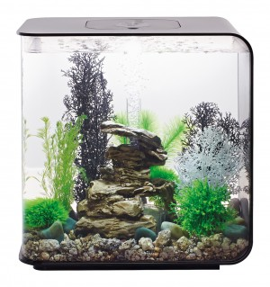 biOrb Aquarieum Flow 30 LED schwarz