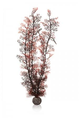 biOrb Hornkoralle groß dunkelrot