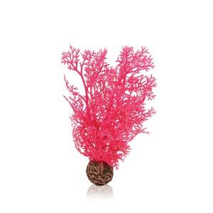 biOrb Hornkoralle klein pink