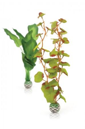 biOrb Seidenpflanzen Set mittelgroß grün