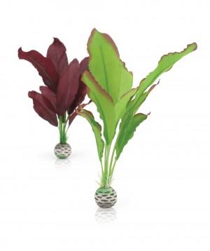 biOrb Seidenpflanzen Set mittelgroß grün/lila
