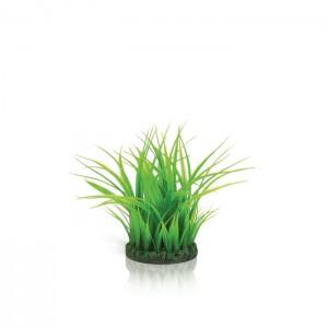 biOrb Grasring grün klein