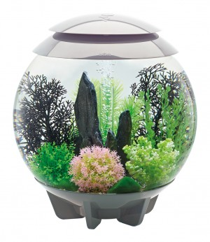 biOrb Aquarieum Halo 30 LED grau