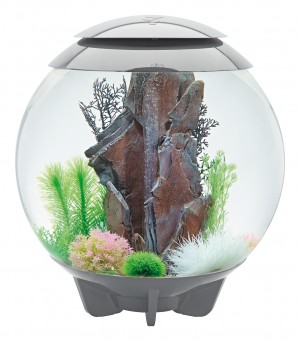 biOrb Aquarieum Halo 60 LED grau