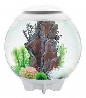 biOrb Aquarieum Halo 60 LED weiß