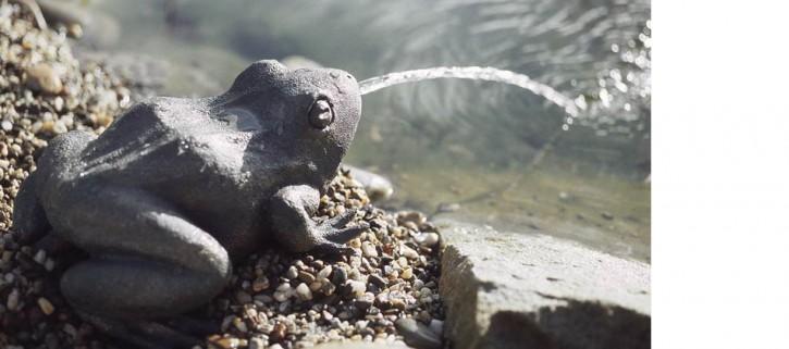 OASE Wasserspeier Frosch