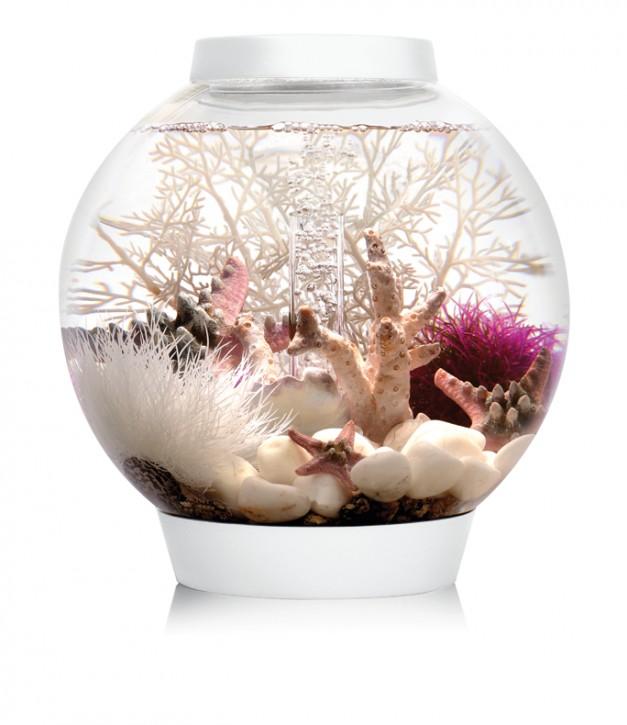 biOrb Aquarieum Classic 15 LED weiß
