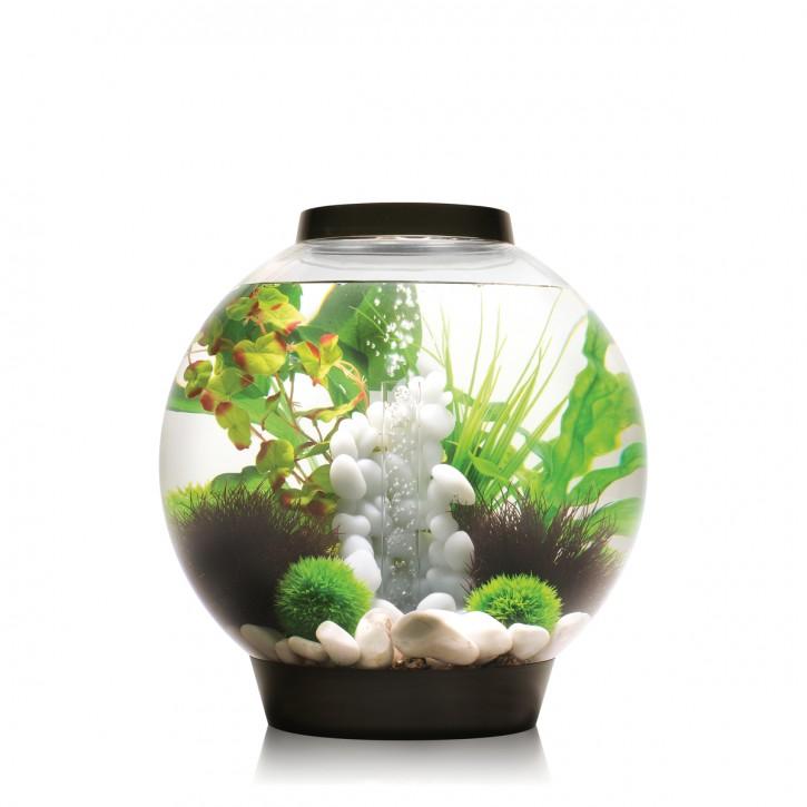 biOrb Aquarieum Classic 30 LED schwarz