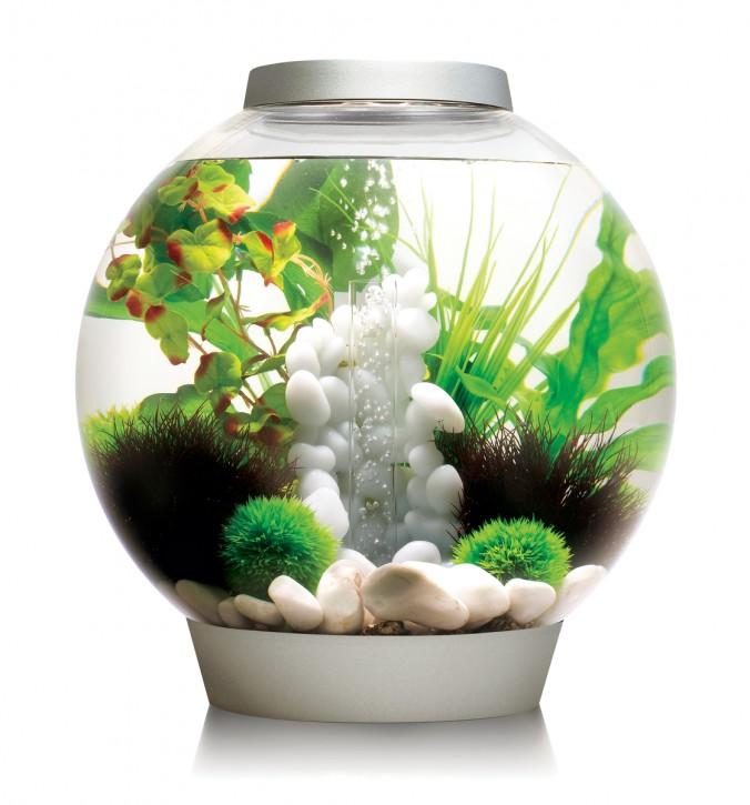 biOrb Aquarieum Classic 30 MCR silber