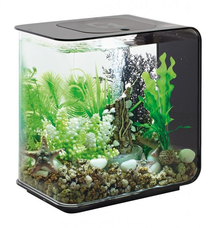 biOrb Aquarieum Flow 15 LED schwarz