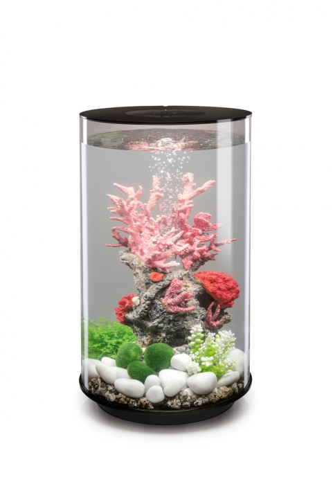 biOrb Aquarieum Tube 30 LED schwarz