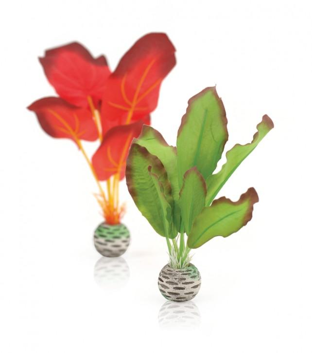 biOrb Seidenpflanzen Set klein grün/rot