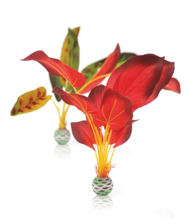 biOrb Seidenpflanzen Set groß grün/rot