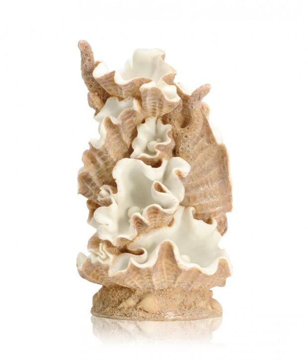 biOrb Muschel Ornament groß