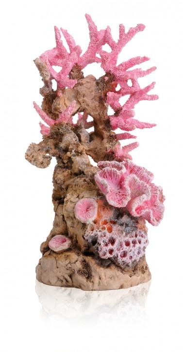 biOrb Korallenriff Ornament pink