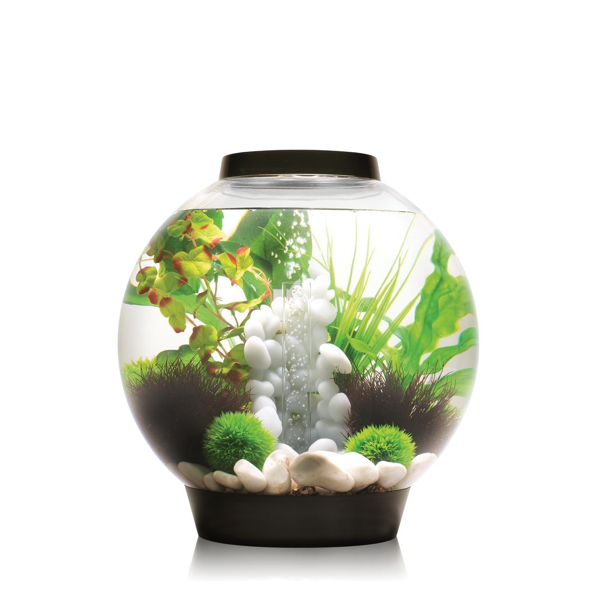 biOrb Aquarieum Classic 60 LED schwarz
