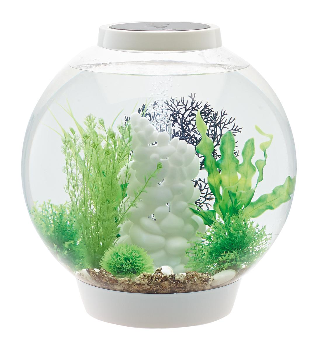 biOrb Aquarieum Classic 30 MCR weiß