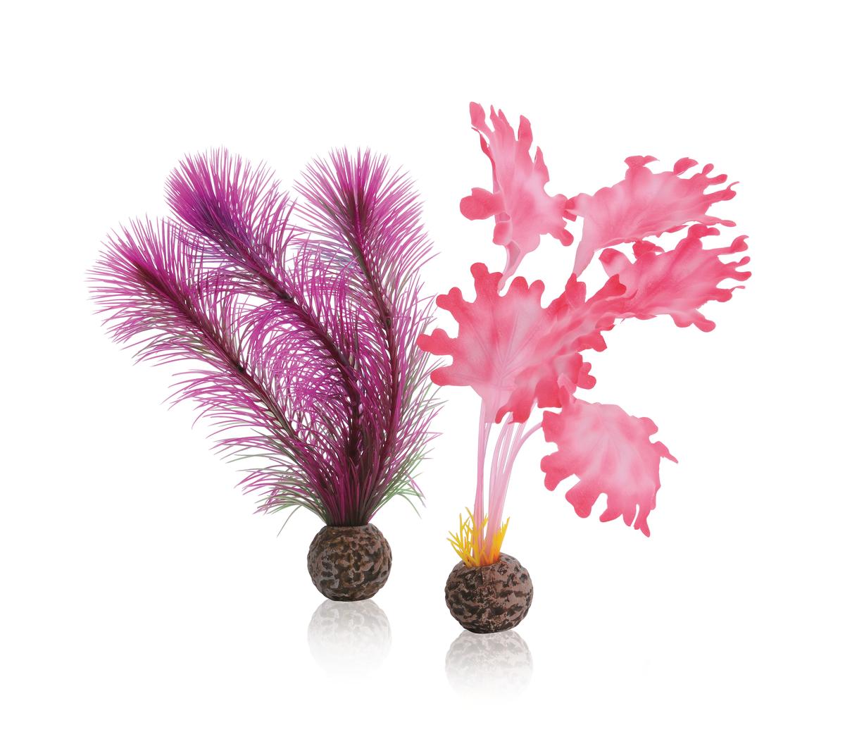 biOrb Seetang Set pink klein